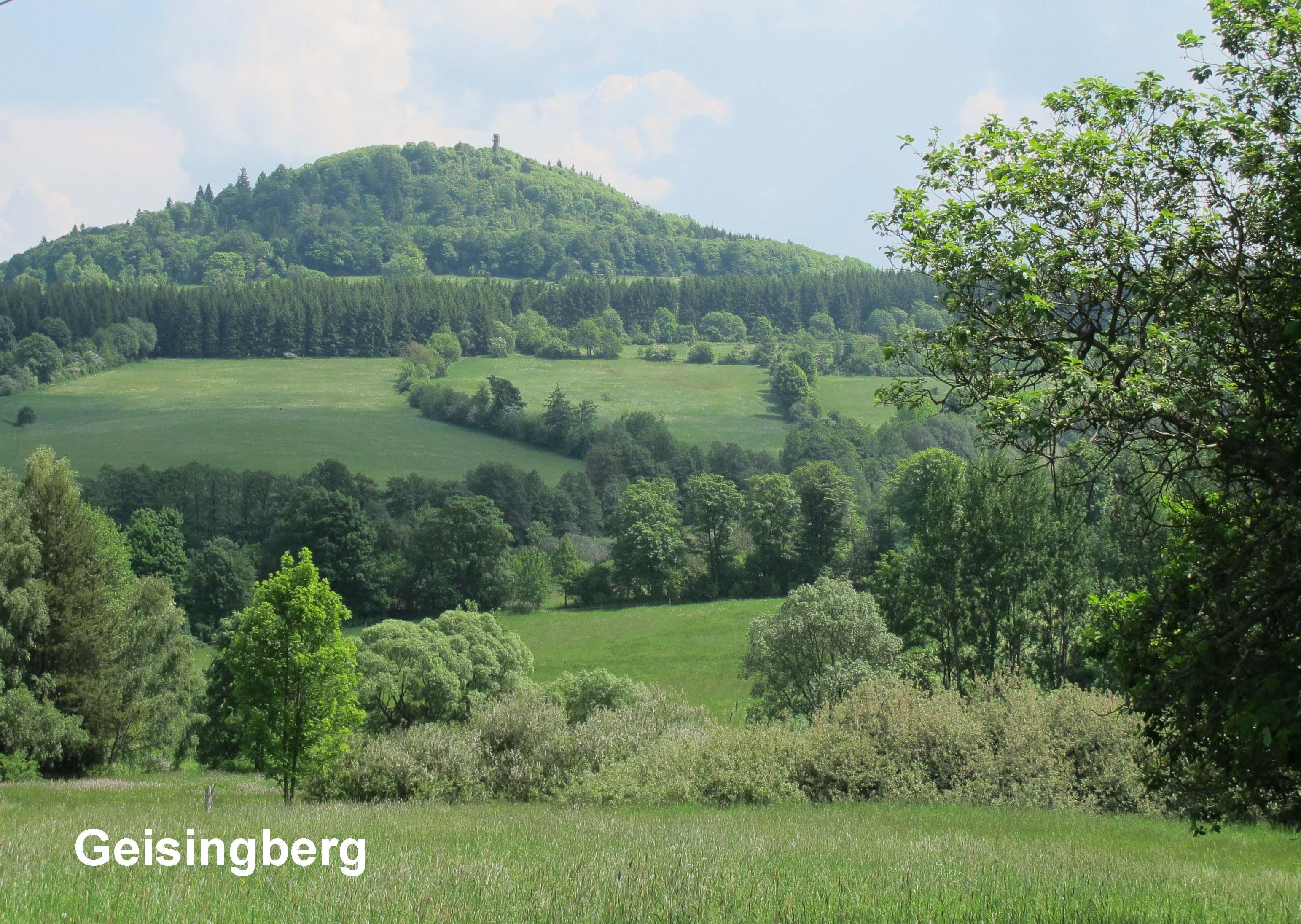 3 - Geisingberg