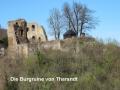 7 - Burgruine Tharandt