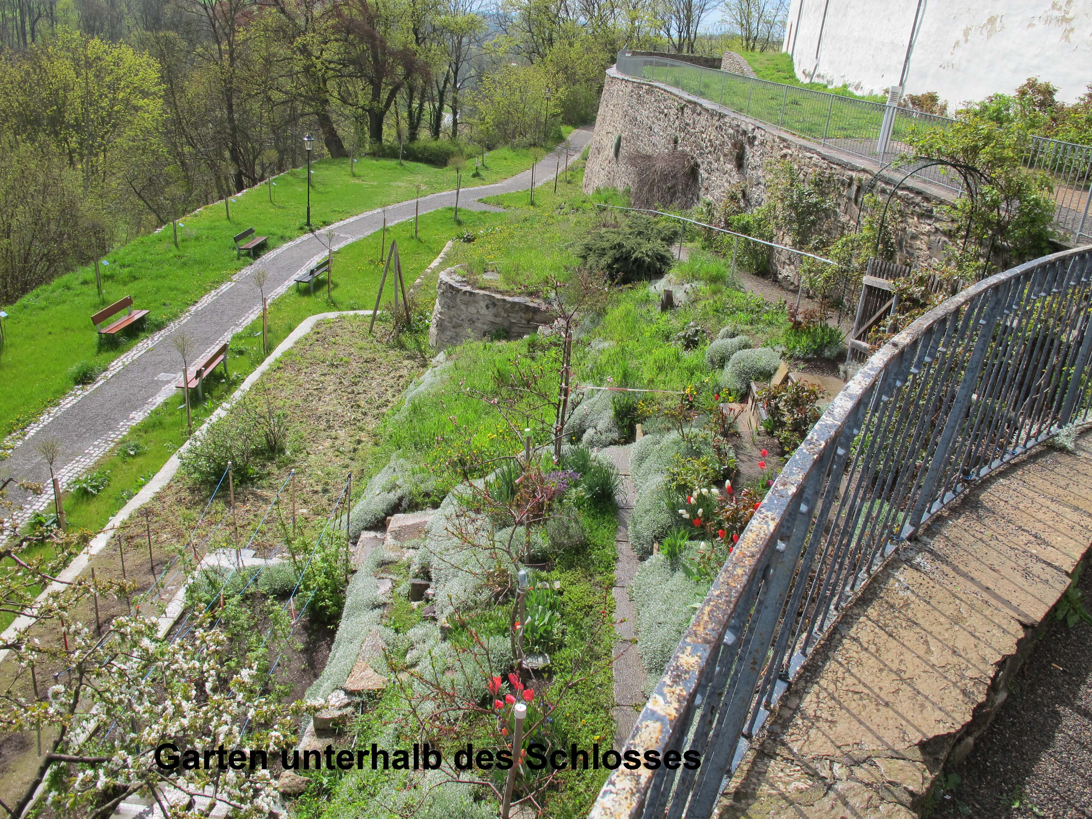 8 Schlossgarten Kopie